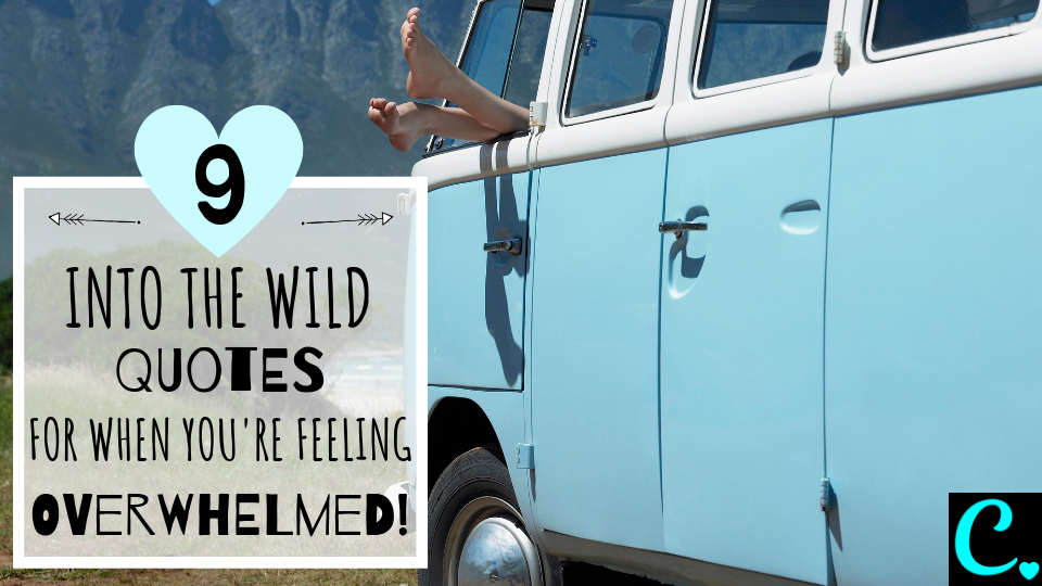 9 Best Into The Wild Quotes For When You're Feeling Overwhelmed | You can do it quotes | Quotes To Inspire | Motivational Quotes | Movie Quotes | Christopher McCandless Via https://captivatingcrazy.com #moviequotes #intothewildquotes #motivationalquotes #inspirationalquotes