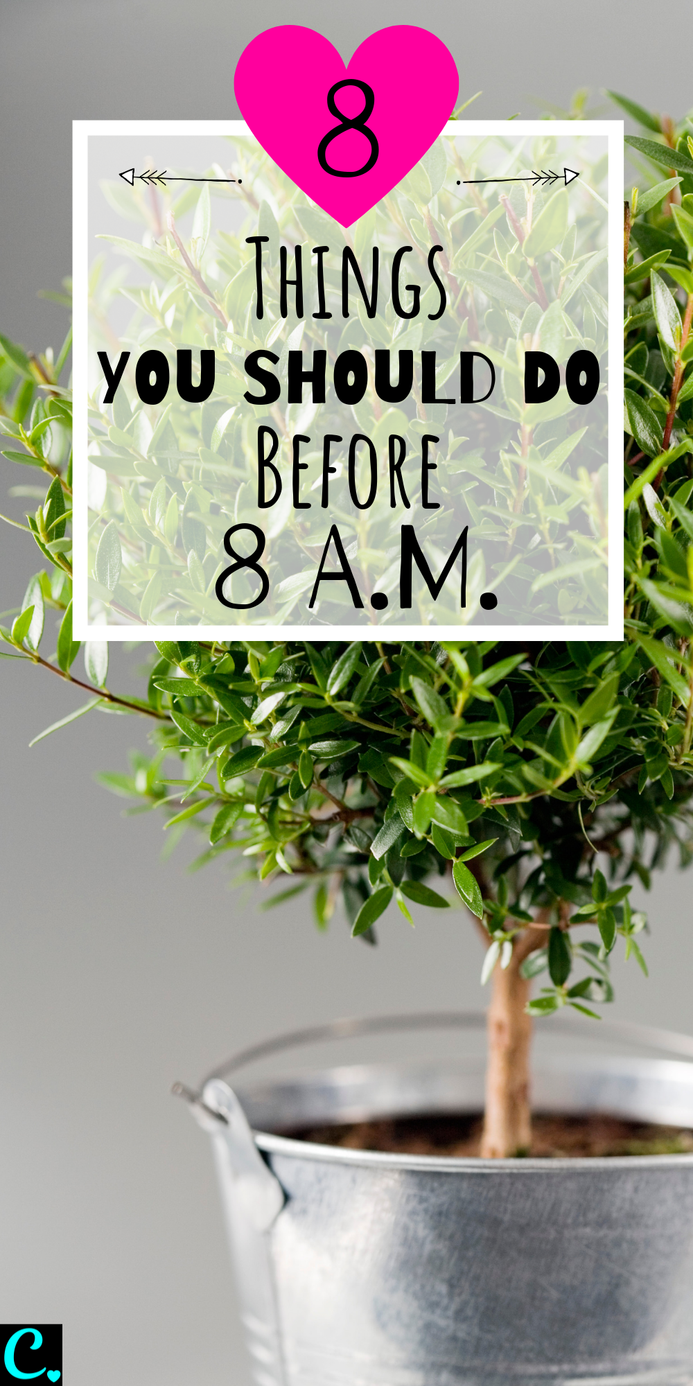 The Best Morning Routine: 8 Things To Do Before 8 A.M.   How to be productive   Personal development   Productivity tips   Habits for success   Via: https://captivatingcrazy.com #captivatingcrazy #bestmorningroutine #productivitytips #howtoachievegoals #successhabits #healthylifestyle #liveyourbestlife
