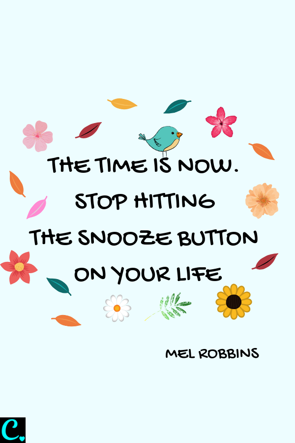 The Time Is Now, Stop Hitting The Snooze Button On Your Life | Positive Quote | Personal Development Quote | Motivational Quote | Via: https://captivatingcrazy.com #captivatingcrazy #positivequote #morningroutinequote #quotesforsuccess #inspirationalquote