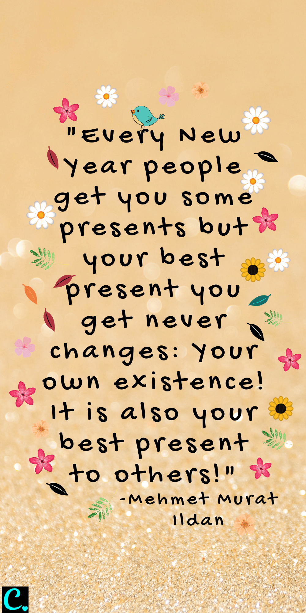 """""""Every New Year people get you some presents but your best present you get never changes: Your own existence! It is also your best present to others!"""""""