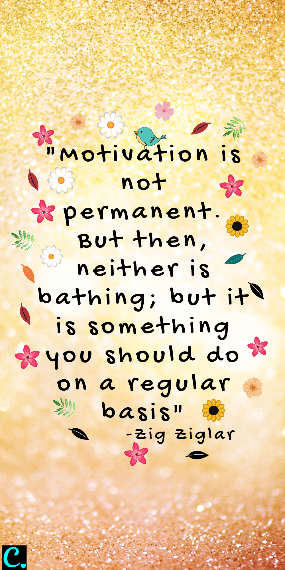 """""""Motivation is not permanent. But then, neither is bathing; but it is something you should do on a regular basis"""""""