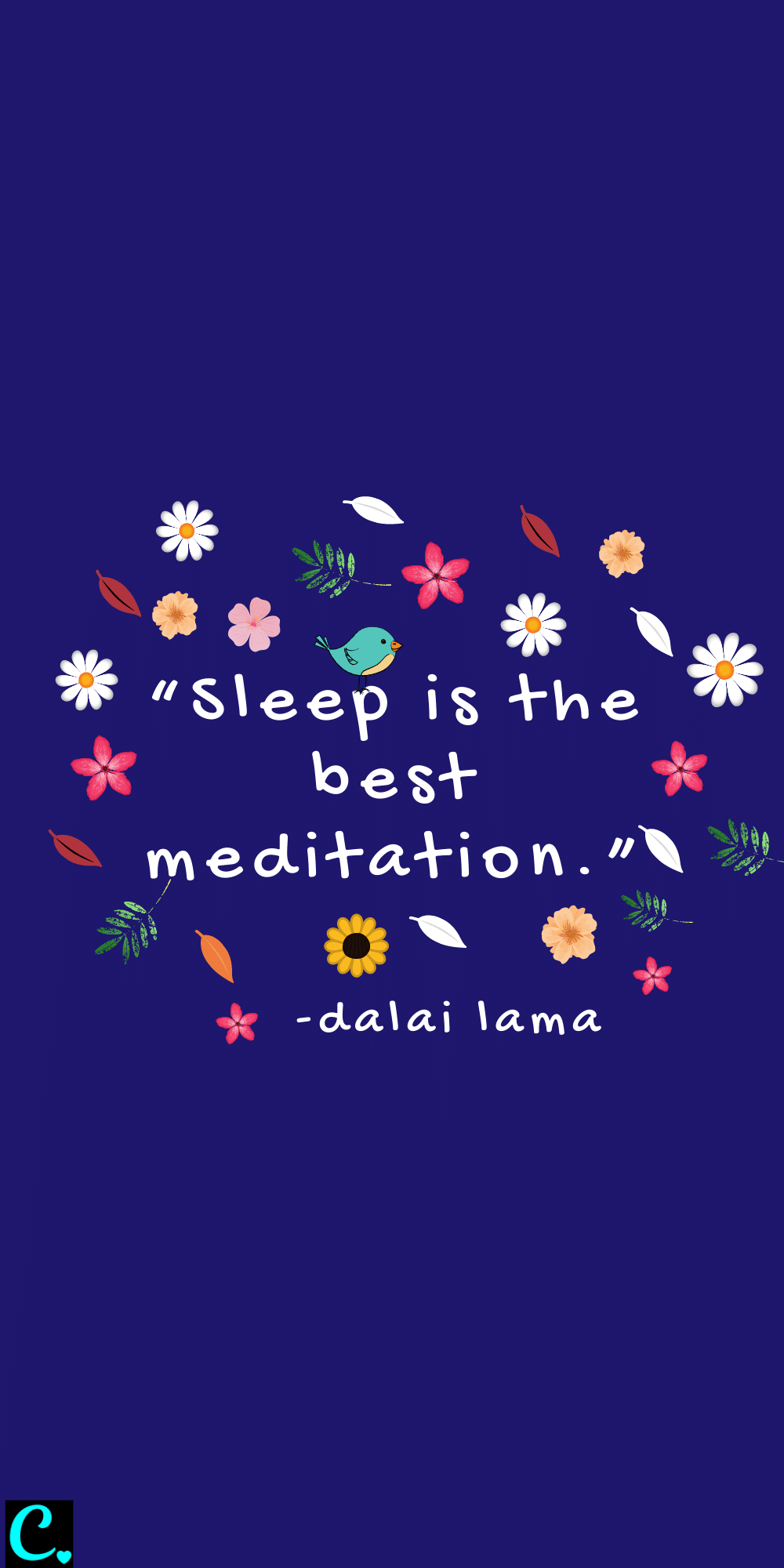 Sleep is the best meditation quote by Dalai Lama