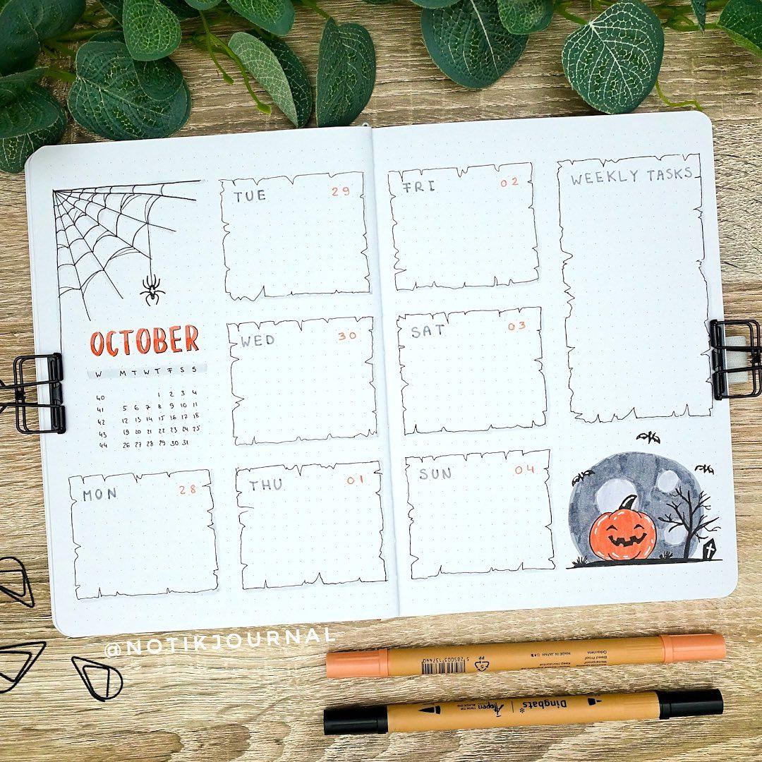 Spiders web weekly spread